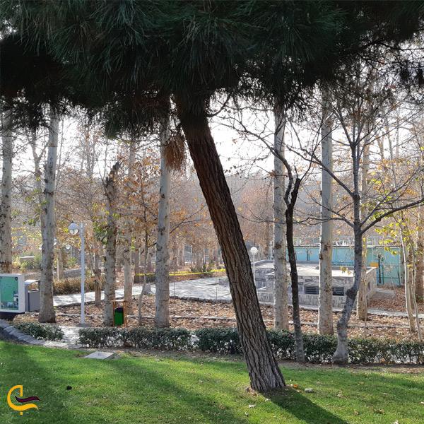 تصویری از فضای طبیعت پارک وکیل اباد مشهد