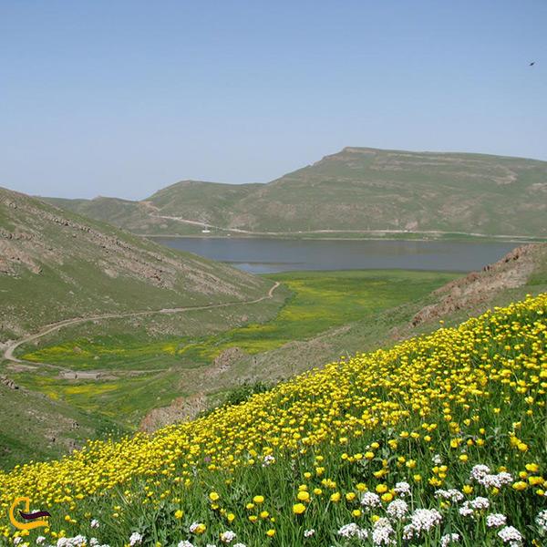 نمایی دیگر از دریاچه نئور