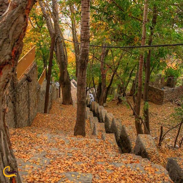 تصویر زیبا از نمای داخل روستای ورزان