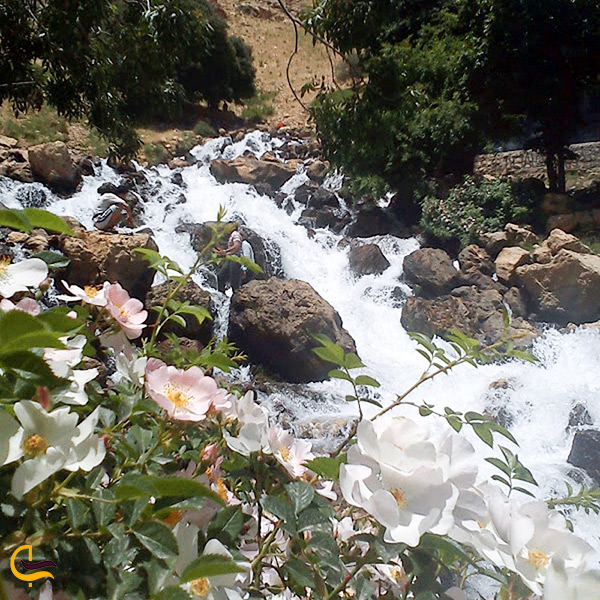 چشمه سرداب روستای رستم آباد