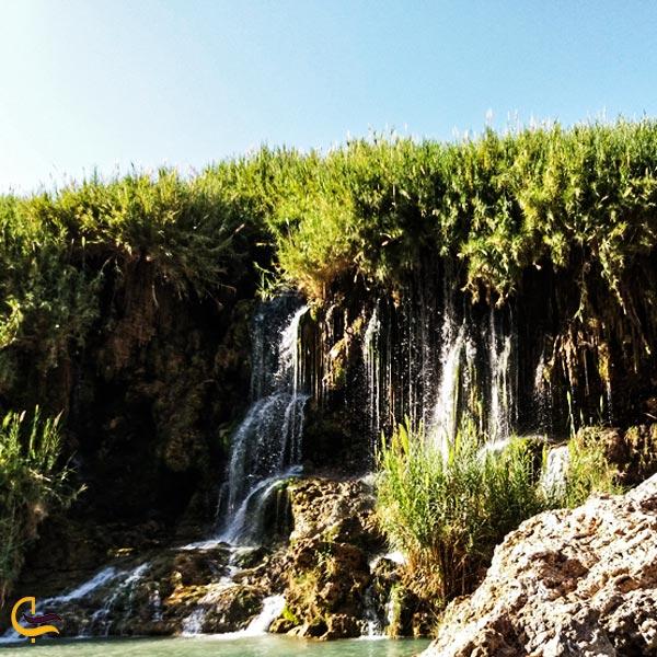 تصویری از طبیعت سرسبز و آبشار فدامی داراب