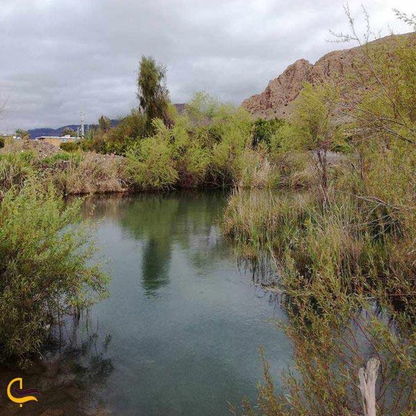 تصویری از طبیعت چشمه گلابی داراب