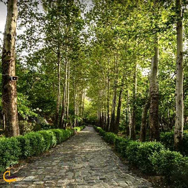 تصویری از طبیعت زیبا پارک جمشیدیه تهران