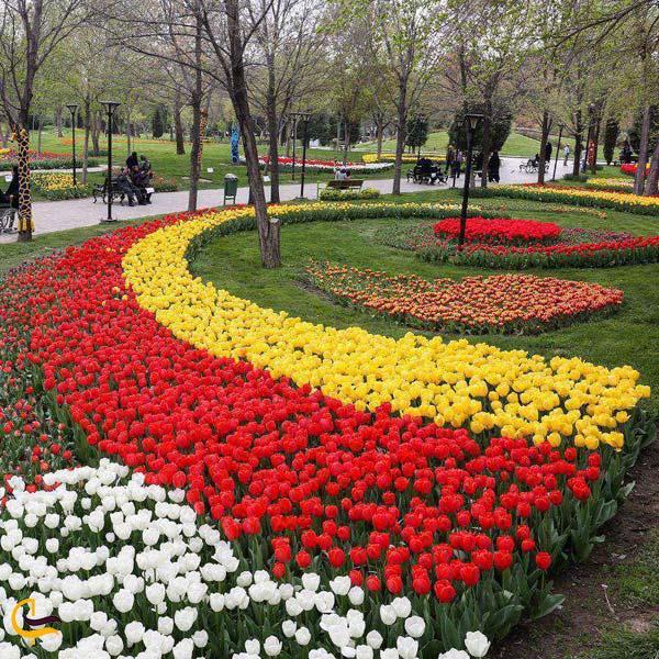 تصویری از باغ گلهای کرمانشاه