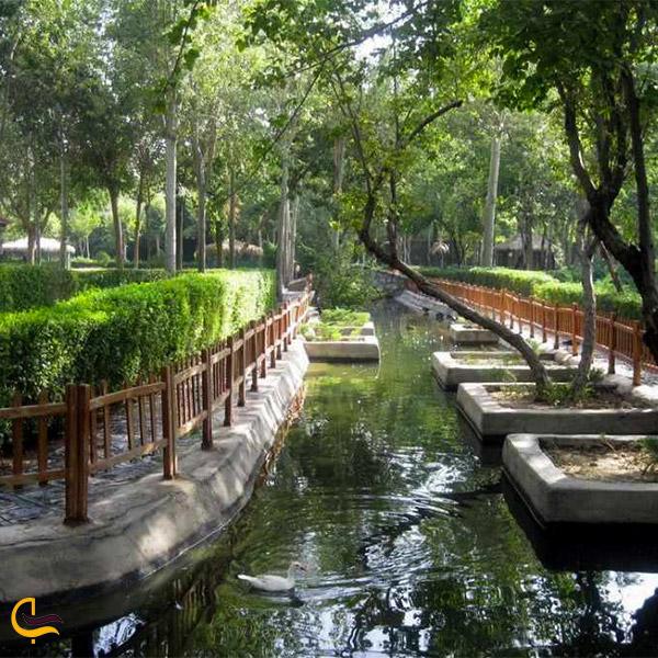 نمایی از پارک ناژوان
