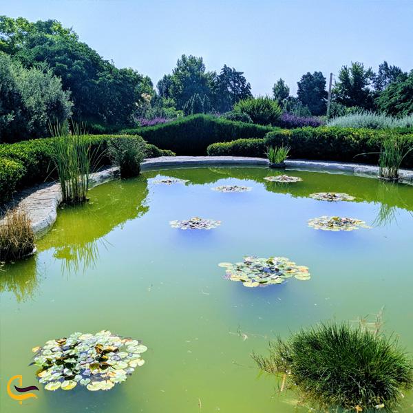 تصویری از باغ گیاه شناسی ملی ایران