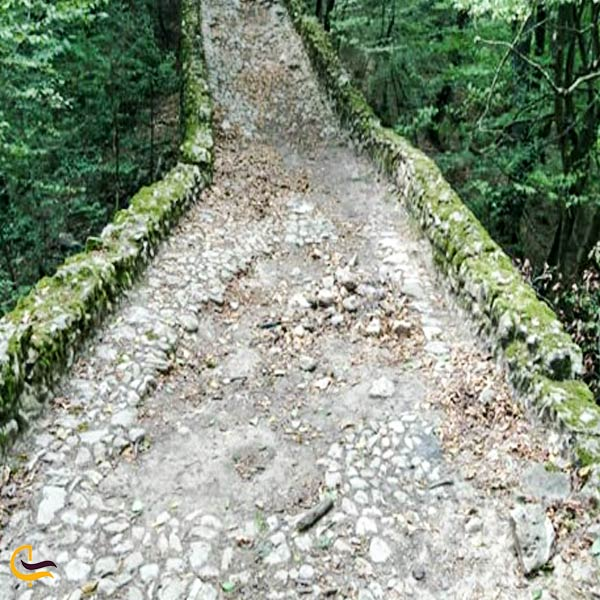 نمایی از جاده سنگ فرش شاه عباسی گلوگاه
