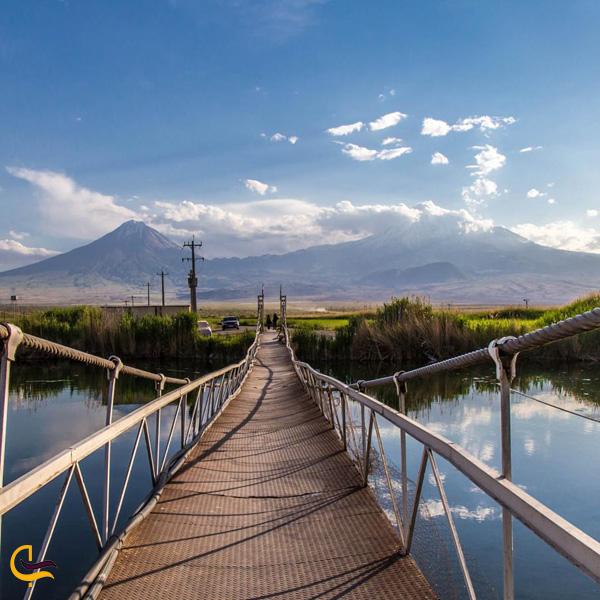 تصویری از پل معلق در طبیعت چشمه ثریا ماکو