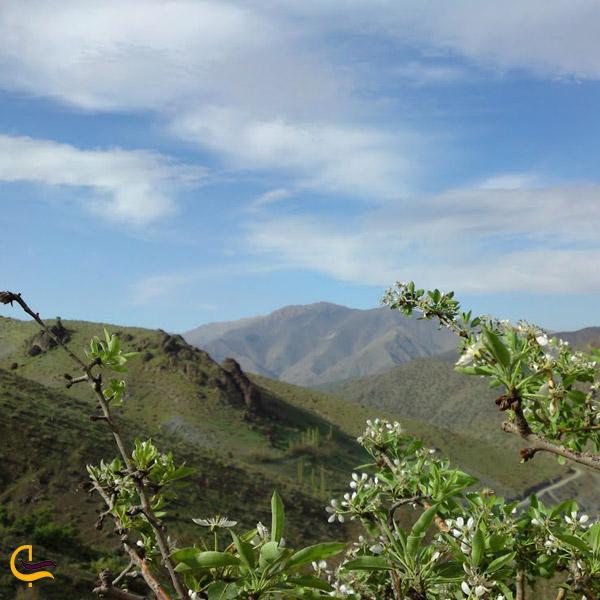 تصویری از کوه های روستای گلیان شیروان