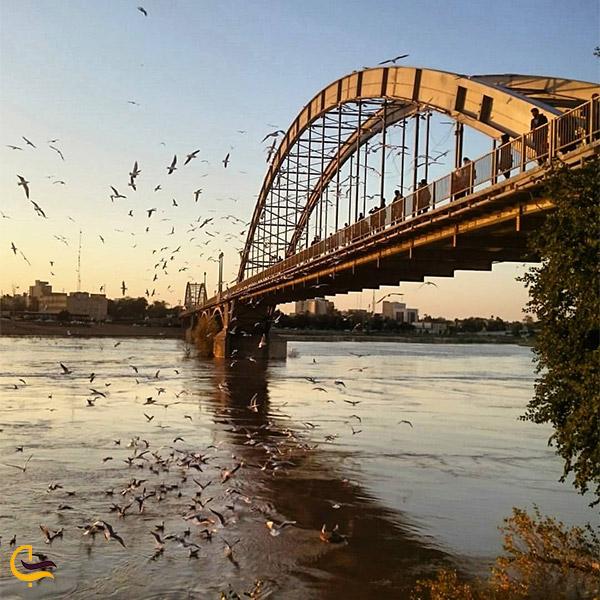 نمایی از پل سفید