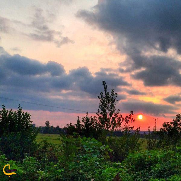 تصویری از طبیعت سرسبز روستای شالما