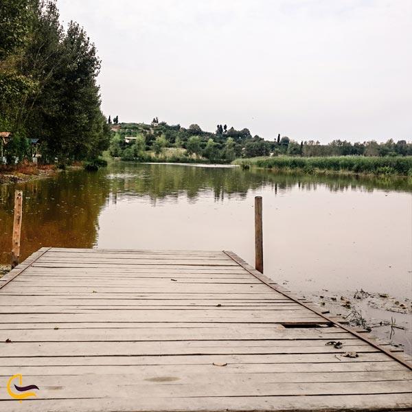 تصویری از پارک نیلوفر آبی