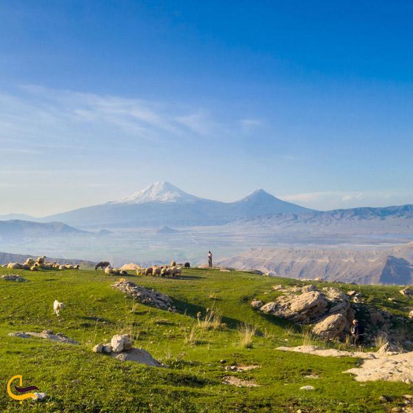 تصویری از منطقه قره قاچ