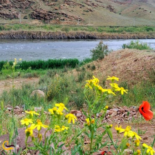 نمایی از طبیعت زیبا رودخانه مرزی ارس