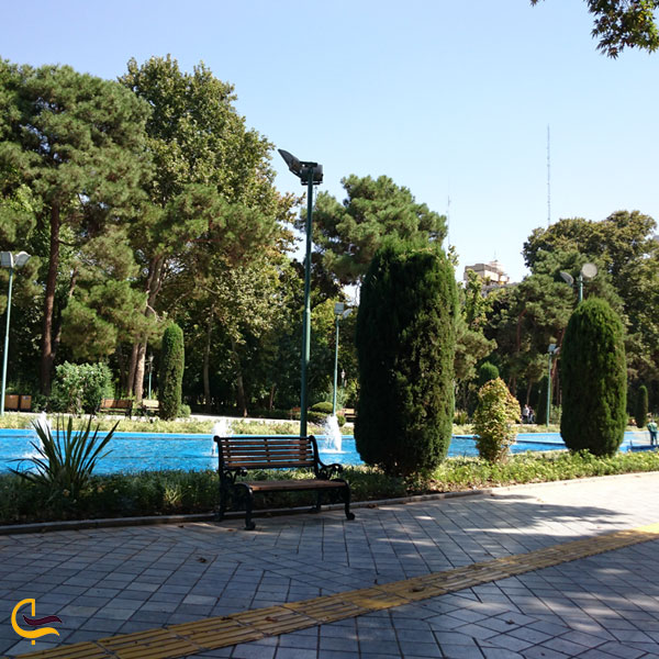 تصویری از طبیعت سرسبز پارک شهر