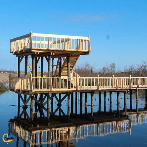 نمای نزدیک پل چوبی تالاب امیرکلایه