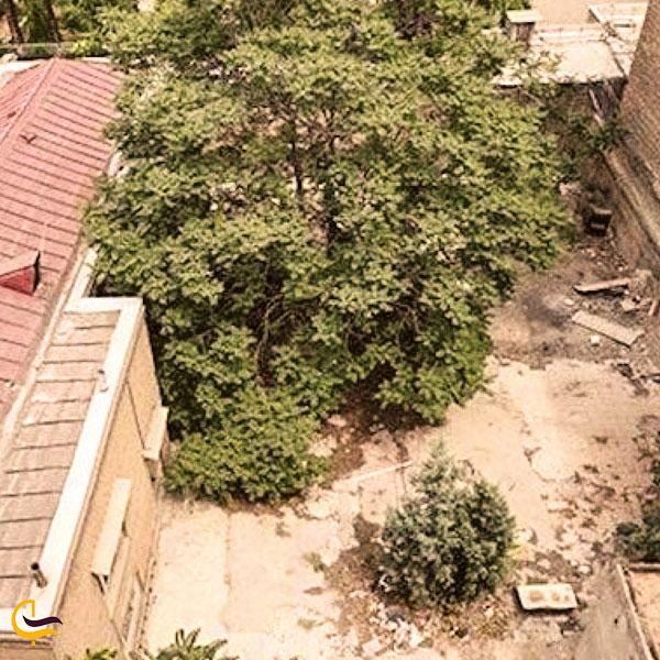 تصویری از حیاط خانه ی ملک الشعرای بهار