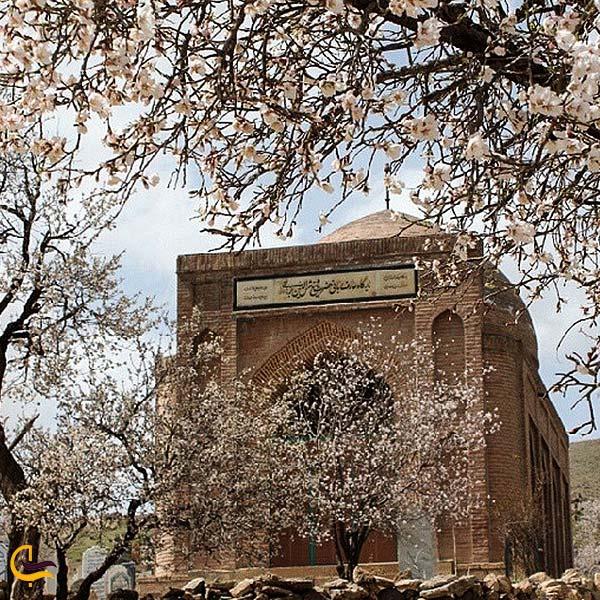 تصویری از خانقاه شمس الدین برهانی