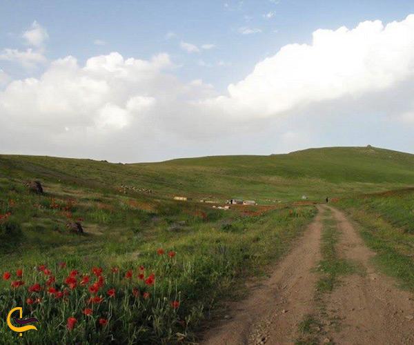 طبیعت زیبای منطقه قوشاداغ اهر
