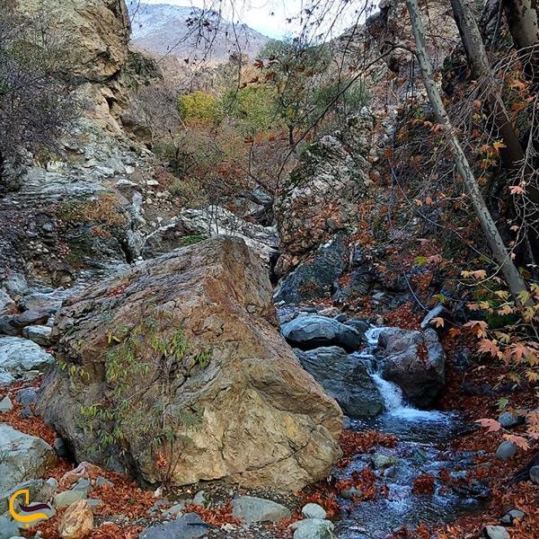 طبیعت زیبای پاییزی درکه