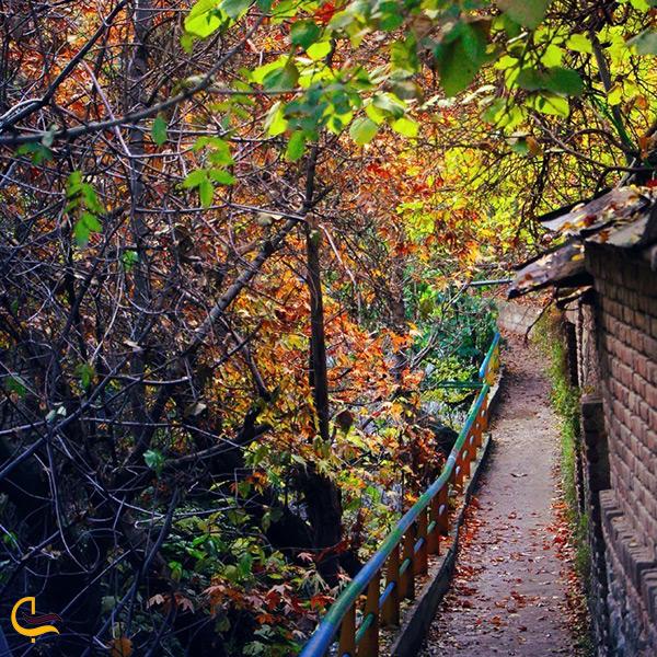 پیاده روی در طبیعت رنگارنگ پاییزی درکه