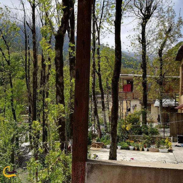 تصویری از طبیعت پارک جنگلی ماسوله