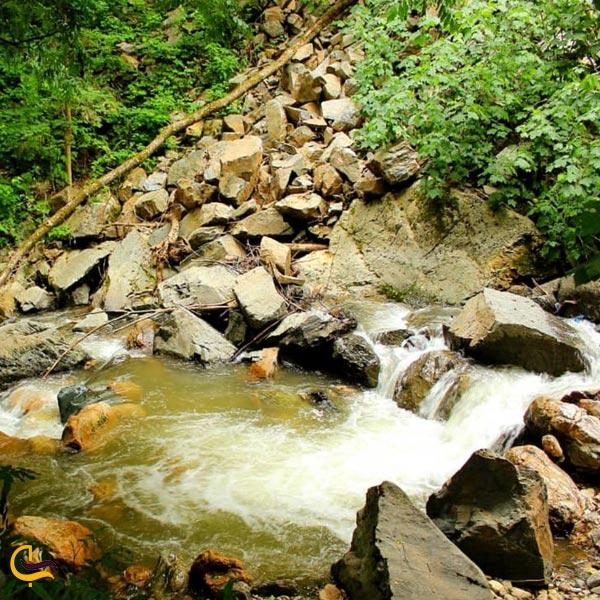 تصویری از طبیعت سرسبز رودخنه ماسوله