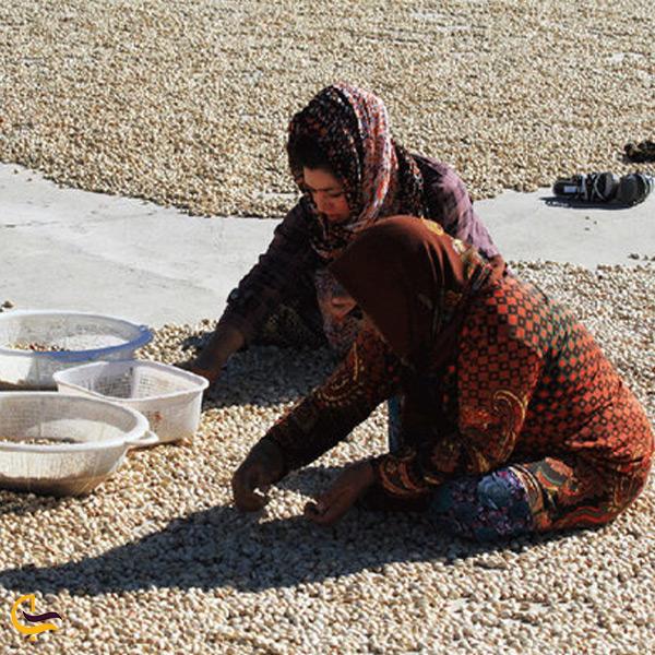 تصویری از مردم روستای گوران
