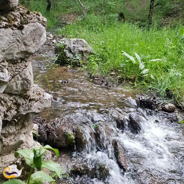 تصویری از رودخانه در پارک جنگلی مکیدی