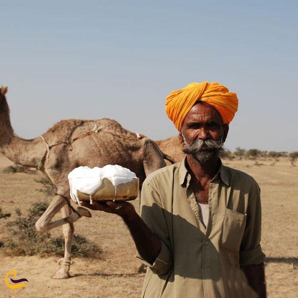 تصویری از شیر شتر دبی