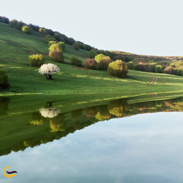 تصویری از طبیعت سرسبز دریاچه سوها