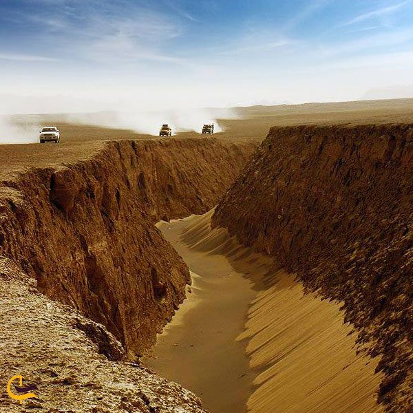 تصویری از شکل ظاهر ی دره زبان مار کرمان