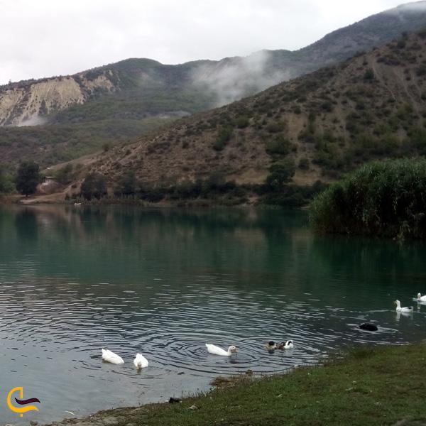 تصویری از دریاچه ولشت