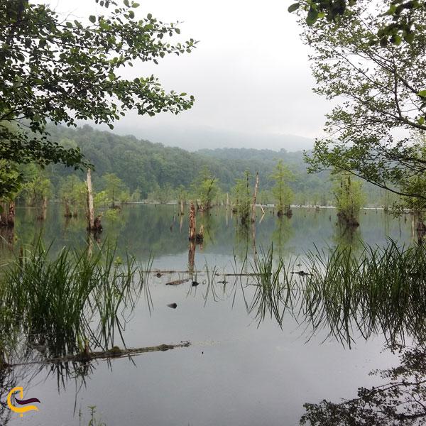 تصویری از دریاچه ارواح