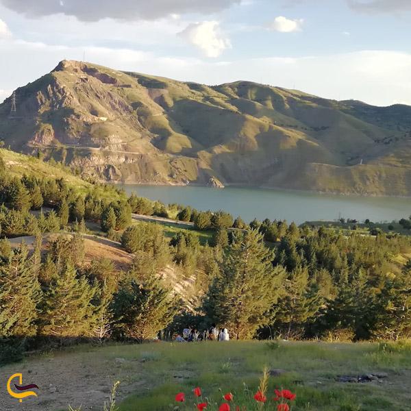 تصویری از طبیعت سرسبز دریاچه سد لتیان