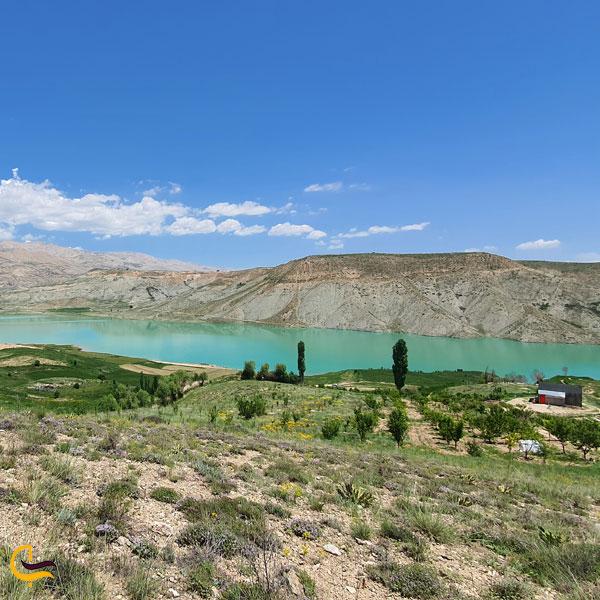 تصویری از طبیعت سرسبز روستای سله بن