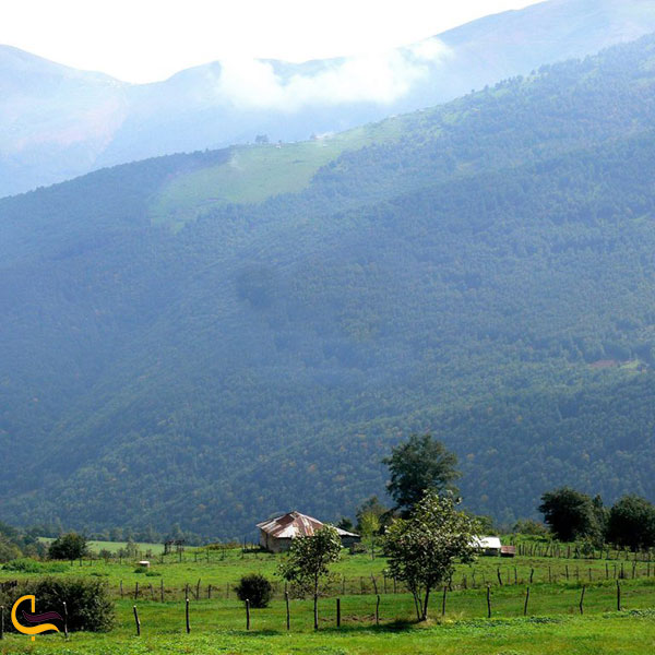 تصویری از مناطق ییلاقی گیلان