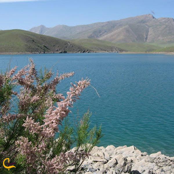تصویری از دریاچه گلپایگان