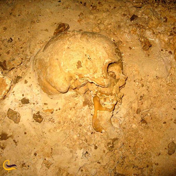 عکس استخوانهای انسان در غار