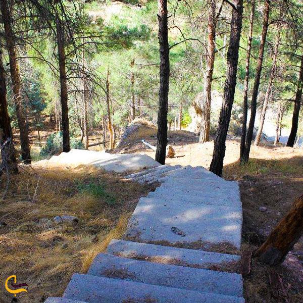 عکس پارک ملی خجیر