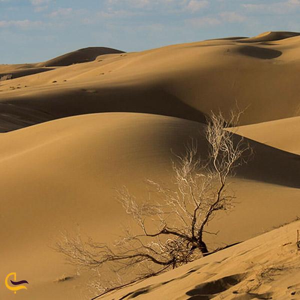 عکس کویر مرنجاب