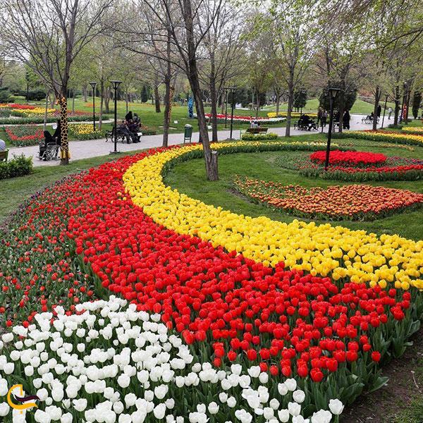 عکس باغ گلها مشهد