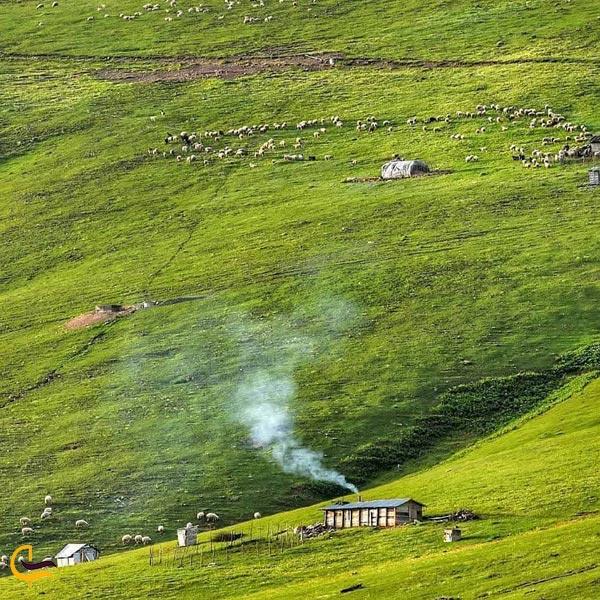 تصویری از روستای پونل