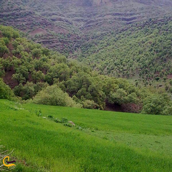 عکس طبیعت زیبا الیگودرز