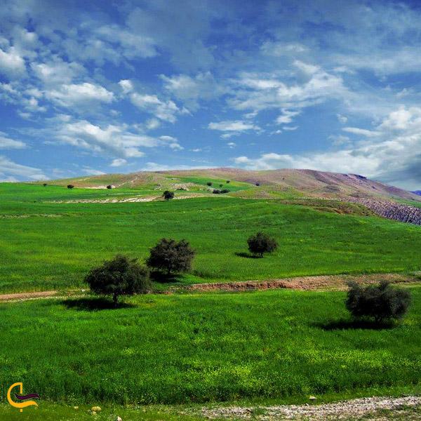 تصویری از طبیعت سرسبز روستای خماط