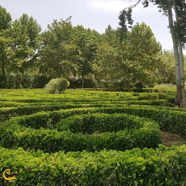 تصویری از هزارتوی باغ گل