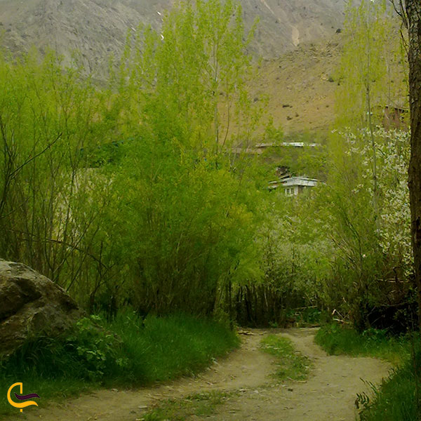 عکس طبیعت روستای حسنکدر