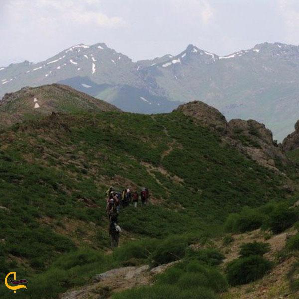 عکس ارتفاعات چهل چشمه