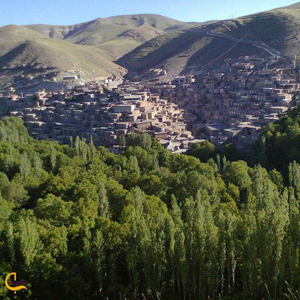 نمایی از پوشش گیاهی روستای لیقوان