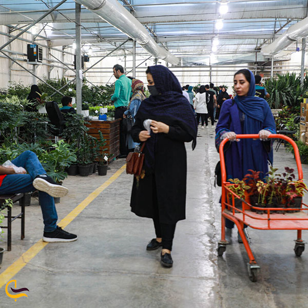 عکس بازار گل و گیاه اصفهان